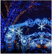 Virtual Tour of the lights